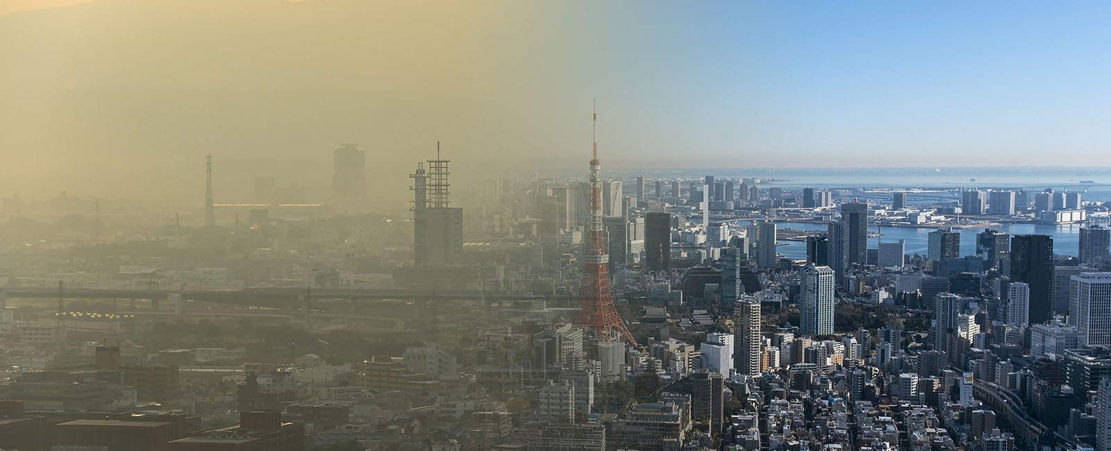 Dünyada ve ülkemizdeki milyonlarca araç hava kirliliğinin kaynaklarından birini oluşturuyor. Bu problemi azaltmak için araçlarda 1975 yılından itibaren katalitik konverter kullanılmaktadır